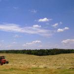 cg-farmland